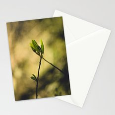 Spring at Nesmith Point Stationery Cards