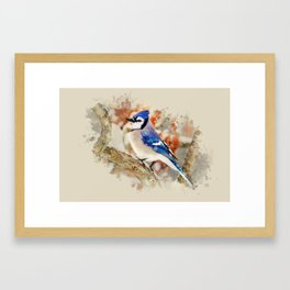 Watercolor Blue Jay Art Framed Art Print