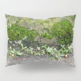 IF ONLY I HAD A MISCROCOPE Pillow Sham