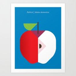 Fruit: Apple Art Print