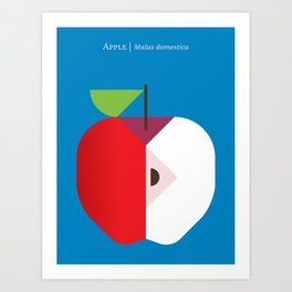 Fruit: Apple Art Print