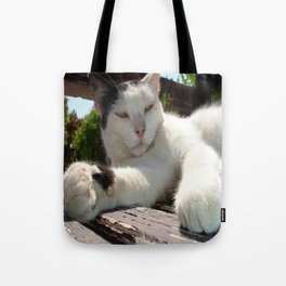 Black and White Bicolor Cat Lounging on A Park Bench Tote Bag