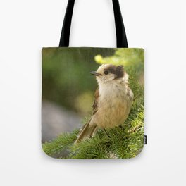 Profile of a Grey Jay / Whiskeyjack Tote Bag