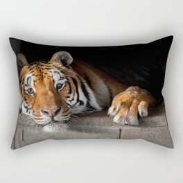 Cincinnati in His Den Rectangular Pillow