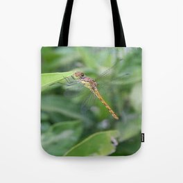 Green and Brown Dragonfly Holding On To Oleander Tote Bag
