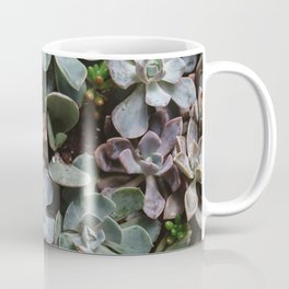 Succulent Paradise Coffee Mug