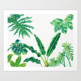 Tropical House Plants Art Print