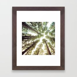 Green Forest Sky Trees Framed Art Print