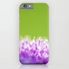 Pompoms Slim Case iPhone 6s