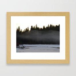 The Coyote Framed Art Print