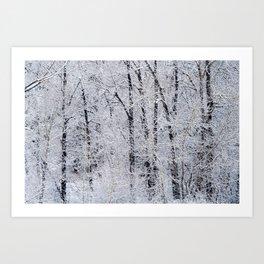 Cottonwood Frost Art Print