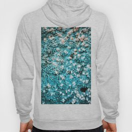 Paradise Found (on a cathedral door) Hoody