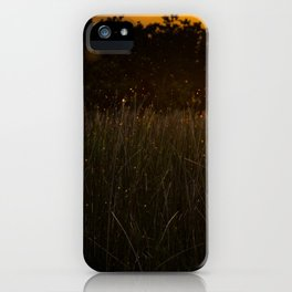Sunset in the Fields iPhone Case