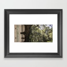 Treeway Framed Art Print
