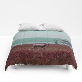 Black Rhino in Pink Comforters