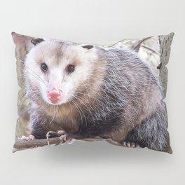 Possum Staredown Pillow Sham