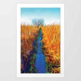 Wetland Boardwalk Art Print