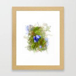 Pretty bluebells on white Framed Art Print