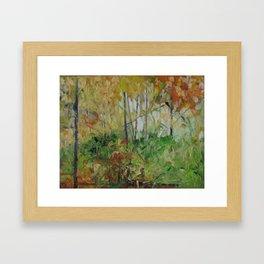 Kawartha Golden Framed Art Print