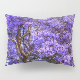 Springtime In Southern California Pillow Sham