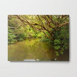Berowra Creek, Sydney Metal Print
