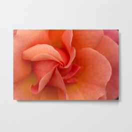 Pinwheel Rose Metal Print