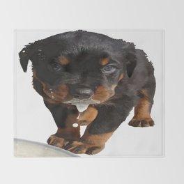 Cute Rottweiler Puppy Lapping Milk Vector Throw Blanket