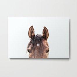 peekaboo horse, bw horse print, horse photo, equestrian, equestrian photo, equestrian decor Metal Print