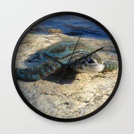 Green Sea Turtle Wool Sculpture Wall Clock