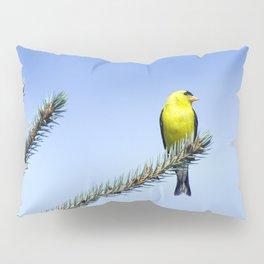 Bird's Eye Blue (American Goldfinch on Blue Spruce) Pillow Sham