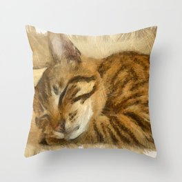 Let Sleeping Cats Lie Throw Pillow