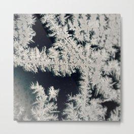 Jack Frost Metal Print