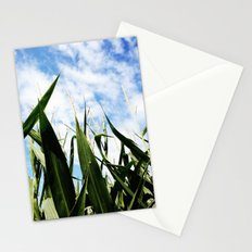 corn in summer Stationery Cards