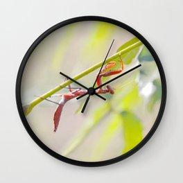 PM #1.... Wall Clock