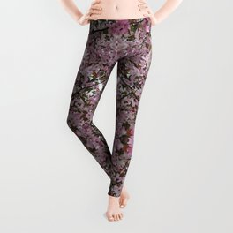Spring has sprung! Leggings