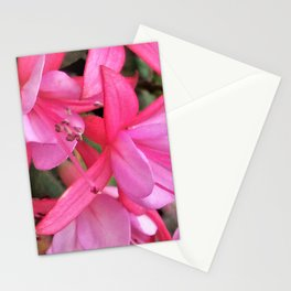 Little Pink Fuchia Stationery Cards