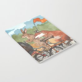 Bike Race Notebook