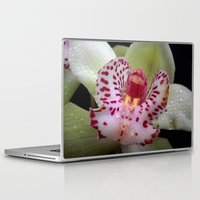 orchid Laptop & iPad Skins featuring Orchid by Vitta