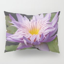 Rosy lavender water lily Pillow Sham