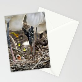 Wood Stork and her Babies Stationery Cards