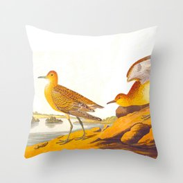 Buff-breasted Sandpiper Bird Throw Pillow