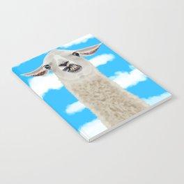 Derp Llama Notebook