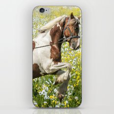 Gypsy Meadow iPhone & iPod Skin