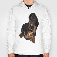 rottweiler Hoodies featuring Cute Rottweiler Puppy Vector by taiche