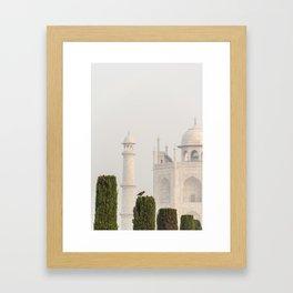 Bird at the Taj Framed Art Print