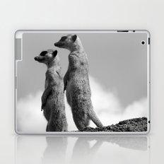 Meerkats, Fuerteventura. Laptop & iPad Skin