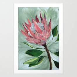 Protea Botanical Acrylic Painting - At The Mailbox I Found The Most Beautiful Bloom Art Print