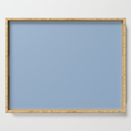 Sherwin Williams Trending Colors of 2019 Celestial (Pastel Blue) SW 6808 Solid Color Serving Tray