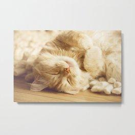 Sleep little sweetie Metal Print