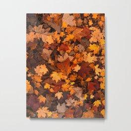 Colorful Leaves Metal Print